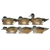 Picture of **FREE SHIPPING** Pro-Grade FFD Elite WIGEON Duck Decoys 6pk by Greenhead Gear