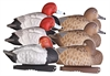 Picture of **FREE SHIPPING**  Pro Grade Series Redhead Duck Decoys (FOAM FILLED) by Greenhead Gear