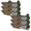 Picture of **FREE SHIPPING** GHG Essential Mallard Duck Decoys 1dz. by Greenhead Gear