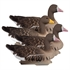 Picture of **FREE SHIPPING** Full Size SPECK Goose Floater 4pk by Higdon Outdoors