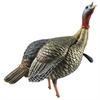 Picture of HDR Jake Turkey Decoy by Avian-X Decoys